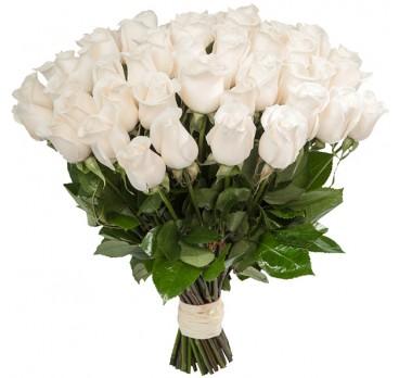 Роза White Chocolate