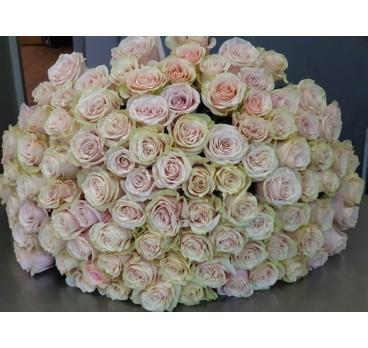 Букет из импортных роз №4