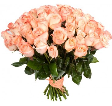 Роза Coral Reef